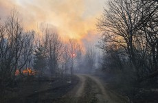 New wildfires start in Chernobyl evacuation zone