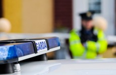 Two arrested after men pretending to be gardai carry out spate of burglaries