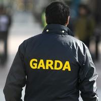 Two men remanded in custody over string of burglaries in Cork