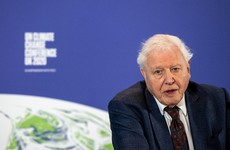 'Stop waste of any kind': David Attenborough warns now is 'last chance' to save planet