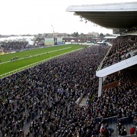 Irish horse racing chief says Cheltenham festival should probably not have taken place
