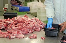 Several Covid-19 clusters reported at meat processing plants