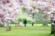 Dublin councils earmark 1.30pm-3.30pm as 'cocooner only' times for parks