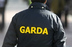 Man who destroyed evidence in garda station and urinated in cell jailed