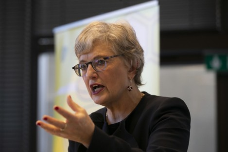 Minister for Children Katherine Zappone at a launch last December.