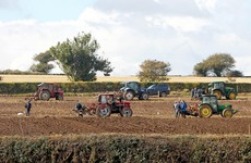 This year's National Ploughing Championships have been cancelled