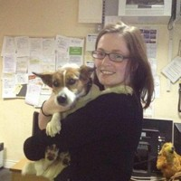 Happy ending: 'Patch' the dog reunited with owner after train journey