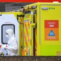 Total UK deaths 'now 50,000 above average'