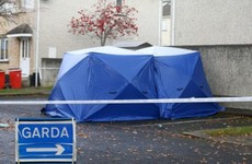 Man and woman appear in court accused of perverting course of justice in fatal Dublin shooting investigation