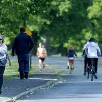 Traffic through Phoenix Park 'unlikely to change' as main avenue to remain for essential workers