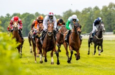 'It's worth nearly €500m to the economy': Taoiseach defends reopening horse racing industry on 8 June