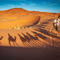 Your evening longread: A history of the Sahara desert, the hottest place on earth