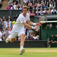 Murray battles past Ferrer to reach semis again