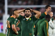 De Allende completes isolation while Munster expect Snyman to arrive this month