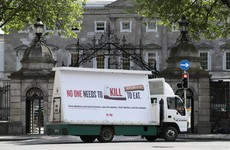 Peta holds billboard protest outside Leinster House calling for closure of meat plants