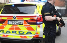 Gardaí believe men arrested in small Offaly town were South American 'hit team'