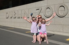 Crowds gather at Dublin Zoo as it reopens to the public for the first time in 11 weeks