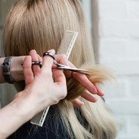 'High-risk engagement': Hairdressers to remain shut until 20 July