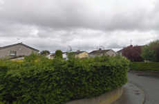 'A despicable attack': Investigation launched after suspected arson attack on garda's home