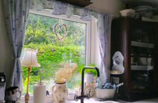 'I could never live somewhere modern': Sabine's Cavan cottage with 2 cats, 3 dogs and 8 ducks