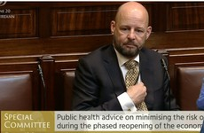 Committee hears further outbreaks of Covid-19 'probable', but strategy is 'right one for Ireland at this time'