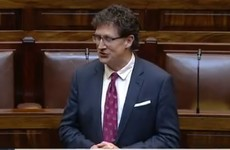 'I repeated a racial slur. I was completely wrong to do so': Eamon Ryan apologises for using the n-word during Dáil debate on racism