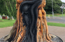 'A wanton act of vandalism': Gardaí investigate fire at popular tree sculpture in Dublin