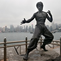 Your evening longread: What it means to understand Bruce Lee