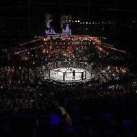 UFC cancels Dublin fight card