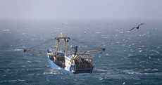 So long and thanks for all the fish: Irish fishermen say UK Brexit position could spell 'unmitigated disaster'