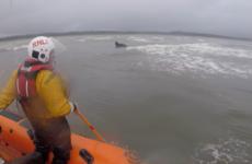Runaway horse rescued by RNLI off the coast near Bundoran