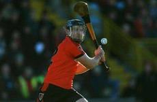 Wexford SHC heads up listings as TG4 brings live GAA back to your screen