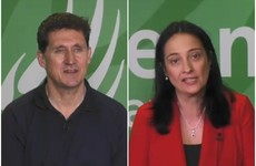 Green leadership race: Martin warns against over-hyping experience; Ryan says Greens' last stint in government wasn't all bad