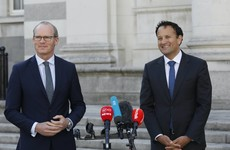 Varadkar and Coveney criticised for seeking extra drivers and staff