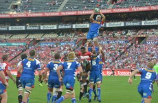 South African franchises eyeing up Champions Cup in global shake-up