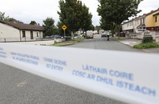 Man arrested following garda stand-off in Dublin after neighbour stabbed to death
