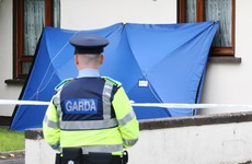Man (48) appears in court charged with murdering his neighbour (77) in Dublin