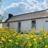 'We moved in one week ago': Inside Caroline's work-in-progress cottage renovation in Kerry