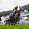 Tony Mullins-trained Princess Zoe triumphs in Galway feature on opening day