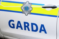 Gardaí appeal for witnesses after man found walking on M8 later dies following domestic disturbance