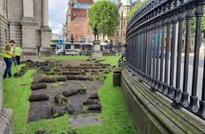 Trinity College plants new wildflower meadow on College Green