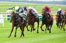 Lucky Vega gives Jessie Harrington Group 1 glory at the Curragh