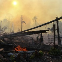 Bolsonaro says it's a 'lie' that fires are ravaging the Amazon