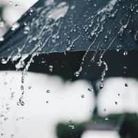 More humid weather today with a risk of thunderstorms