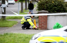 Man (61) charged with murder of elderly mother after fatal assault in Clontarf