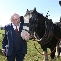 The Ploughing: Plan to hold spectator-free events scaled back again as organisers cancel most contests