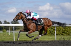 Enable warms up for Arc glory with 1/14 stroll at Kempton