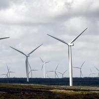 Italian police seize giant wind farm in mafia probe