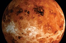 Detection of phosphine in Venus' clouds 'indicates potential for life'