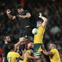 New Zealand confirm two Bledisloe Cup tests with Australia next month